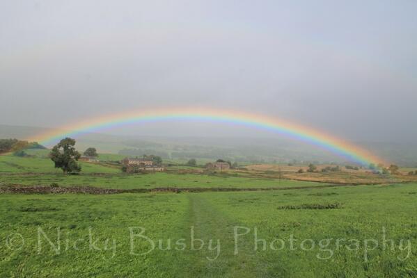 Dales rainbow