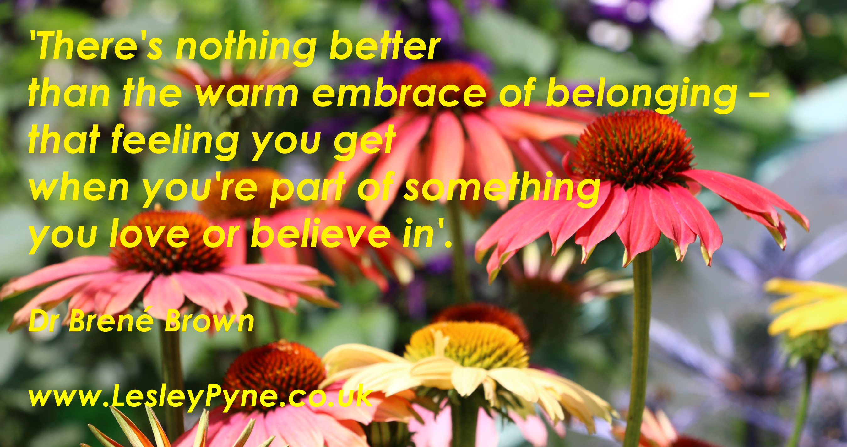 The warm embrace of belonging