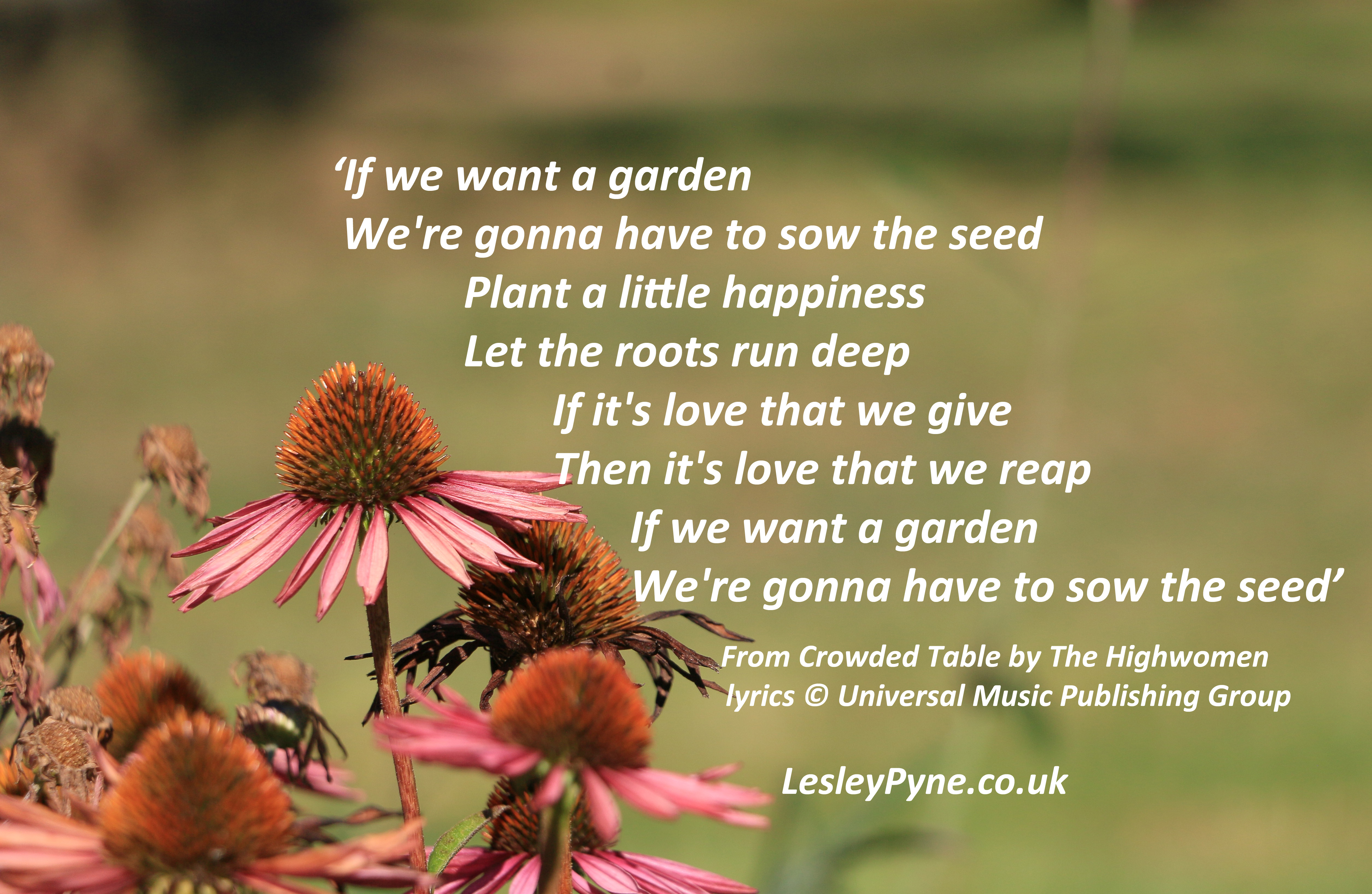 Are you ready to plant some seeds?